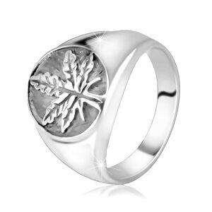 Mohutný strieborný 925 prsteň - marihuanový list v kruhu s patinou - Veľkosť: 72 mm