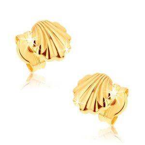 Náušnice zo žltého 9K zlata - lesklé morské mušle