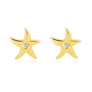 Náušnice zo žltého zlata 375 - morská hviezdica, číry okrúhly zirkón, puzetky