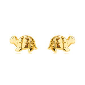 Zlaté náušnice z 9K zlata - zrkadlovolesklá korytnačka s gravírovaním, puzetky